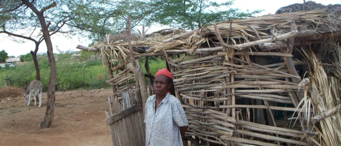 #13 - Hatian woman & hut